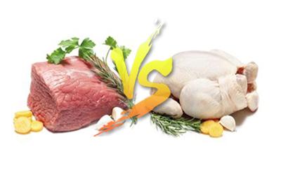 现代专家与鸡博仕带你全面剖析何为白肉